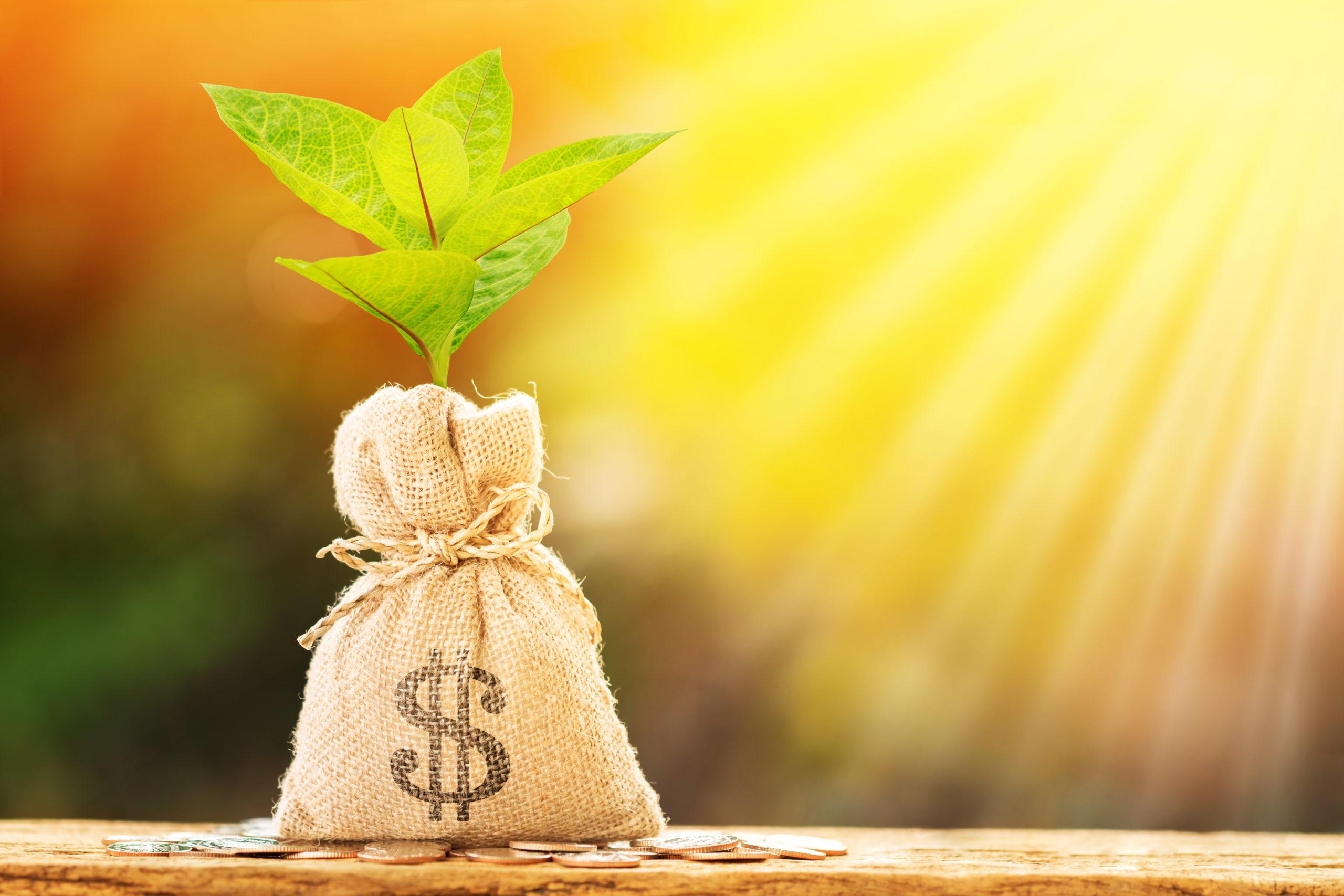 enhanced income fund